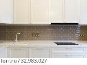Фасад белой, деревянной кухни с коричневым фартуком в кирпич. Стоковое фото, фотограф Elizaveta Kharicheva / Фотобанк Лори