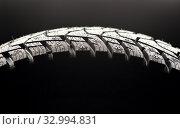 Купить «Close-up of a car tire standing upright», фото № 32994831, снято 4 ноября 2019 г. (c) Pavel Biryukov / Фотобанк Лори