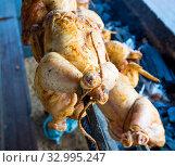 Купить «Приготовление целой курицы гриль на углях», фото № 32995247, снято 4 августа 2019 г. (c) Вячеслав Палес / Фотобанк Лори