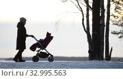 Mother perambulates her newborn when standing in winter forest on lake shore, silhouettes of woman and baby carriage. Стоковое видео, видеограф Кекяляйнен Андрей / Фотобанк Лори