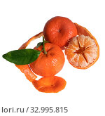 Купить «Three tangerines with leaves isolated on a white background. One tangerine with partial peel», фото № 32995815, снято 27 января 2020 г. (c) Ирина Кожемякина / Фотобанк Лори
