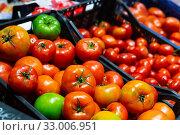 Купить «Fresh tomatoes in containers», фото № 33006951, снято 26 февраля 2020 г. (c) Яков Филимонов / Фотобанк Лори