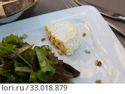 Купить «Cheese Saint Marcellin with pine nuts», фото № 33018879, снято 12 октября 2018 г. (c) Яков Филимонов / Фотобанк Лори