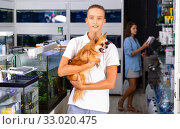 Portrait of smiling teenager in pet store with small dog in his hands. Стоковое фото, фотограф Яков Филимонов / Фотобанк Лори
