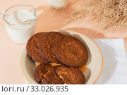 Healthy food, breakfast, cereal snack. Fresh milk in a glass jug and oatmeal cookies on the table, an armful of ears of corn on a peach color background. A balanced diet, protein and carbohydrates. Стоковое фото, фотограф Светлана Евграфова / Фотобанк Лори
