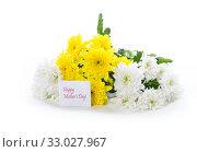 Купить «bouquet of yellow and white chrysanthemums isolated on white», фото № 33027967, снято 4 февраля 2020 г. (c) Peredniankina / Фотобанк Лори