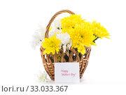 Купить «bouquet of yellow and white chrysanthemums isolated on white», фото № 33033367, снято 5 февраля 2020 г. (c) Peredniankina / Фотобанк Лори