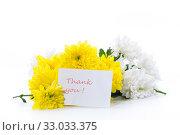 Купить «bouquet of yellow and white chrysanthemums isolated on white», фото № 33033375, снято 5 февраля 2020 г. (c) Peredniankina / Фотобанк Лори