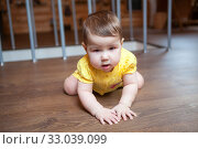 Seven month old baby learning to stand on knees after crawling on hardwood floor in domestic room. Стоковое фото, фотограф Кекяляйнен Андрей / Фотобанк Лори