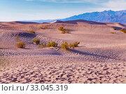 Sands and dunes in the Utah desert national park (2015 год). Стоковое фото, фотограф Сергей Новиков / Фотобанк Лори