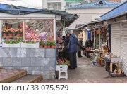 Купить «Рынок Сенной. Краснодар. Пожилые женщины продают живые цветы и всякую всячину. 02.2020.», фото № 33075579, снято 13 февраля 2020 г. (c) Игорь Тарасов / Фотобанк Лори