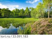 Купить «Lake in the Craigellachie Nationwide Nature reserve, Scotland», фото № 33091183, снято 7 апреля 2020 г. (c) age Fotostock / Фотобанк Лори