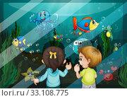 Купить «At the aquarium», фото № 33108775, снято 10 июля 2020 г. (c) PantherMedia / Фотобанк Лори