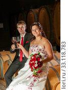 bridal couple at the wine tasting. Стоковое фото, фотограф Sabine Katzenberger / PantherMedia / Фотобанк Лори