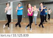Купить «People enjoying active dances», фото № 33125839, снято 17 февраля 2020 г. (c) Яков Филимонов / Фотобанк Лори