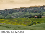 Tuscany landscape around Pienza, Val d'Orcia, Italy. Стоковое фото, фотограф Frank Fischbach / PantherMedia / Фотобанк Лори