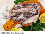 Купить «Raw squid with lemon, garlic and parsley on a wooden cutting board», фото № 33132039, снято 20 февраля 2020 г. (c) Яков Филимонов / Фотобанк Лори