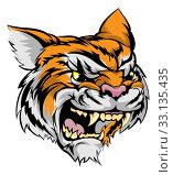Купить «Tiger mascot character», фото № 33135435, снято 19 февраля 2020 г. (c) PantherMedia / Фотобанк Лори