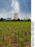 "Nuclear Power Plant ""Isar"" behind a maizefield (Bavaria / Germany) Стоковое фото, фотограф Lena Wurm / PantherMedia / Фотобанк Лори"
