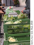 vegetable market with fresh vegetables. Стоковое фото, фотограф Alfred Hofer / PantherMedia / Фотобанк Лори