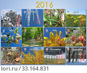 calendar for 2016 in English with photo for every month. Стоковое фото, фотограф Alexander Matvienko / PantherMedia / Фотобанк Лори
