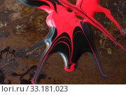 Купить «Red and black on textures», фото № 33181023, снято 23 февраля 2020 г. (c) PantherMedia / Фотобанк Лори