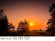 Купить «Tree silhouette in a sunrise», фото № 33181727, снято 31 мая 2020 г. (c) PantherMedia / Фотобанк Лори