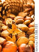 Купить «autumn - chestnuts,acorns,leaves,nuts», фото № 33188151, снято 5 июля 2020 г. (c) PantherMedia / Фотобанк Лори