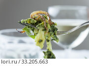 Купить «spinach spaetzle is a bavarian specialty», фото № 33205663, снято 8 апреля 2020 г. (c) PantherMedia / Фотобанк Лори