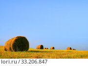 Field with a roll of straw against a blue sky. Стоковое фото, фотограф Алексей Хромушин / Фотобанк Лори