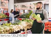 Купить «Male shop assistant lays fresh cabbage on counter in grocery shop», фото № 33210567, снято 20 ноября 2019 г. (c) Яков Филимонов / Фотобанк Лори