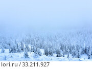 Купить «Blue winter landscape - mountain forest in a frosty haze», фото № 33211927, снято 8 февраля 2020 г. (c) Евгений Харитонов / Фотобанк Лори