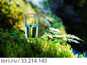 Clear water in a clear glass against a background of green moss with a mountain river in the background. Healthy food and environmentally friendly natural water. Стоковое фото, фотограф Zoonar.com/Ian Iankovskii / easy Fotostock / Фотобанк Лори