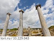 Three Columns at the Ruins of Perga Turkey. Стоковое фото, фотограф Scott Griessel / PantherMedia / Фотобанк Лори