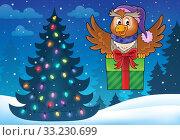 Owl with gift theme image 5. Стоковое фото, фотограф Klara Viskova / PantherMedia / Фотобанк Лори