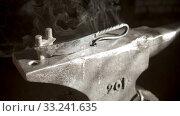 Купить «Recently made new unique knife with unusual handle - cool steam coming from the knife», видеоролик № 33241635, снято 6 июня 2020 г. (c) Константин Шишкин / Фотобанк Лори