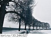 Купить «Saint Petersburg, Russia. Spit of Vasilyevsky Island», фото № 33244027, снято 30 января 2020 г. (c) Знаменский Олег / Фотобанк Лори