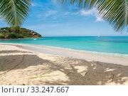 Купить «Tropical beach», фото № 33247667, снято 30 марта 2020 г. (c) PantherMedia / Фотобанк Лори