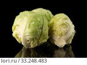 Fresh brussels sprouts. Стоковое фото, фотограф Carlos Santos / PantherMedia / Фотобанк Лори