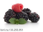 Купить «Raspberry with blackberry», фото № 33255951, снято 12 июля 2020 г. (c) PantherMedia / Фотобанк Лори