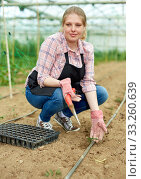 Купить «Young female horticulturist in apron and gloves planting green seedlings», фото № 33260639, снято 9 апреля 2019 г. (c) Яков Филимонов / Фотобанк Лори