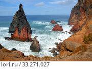 Ponta de Sao Laurenco Nature reserve, Madeira. Стоковое фото, фотограф Edwin Giesbers / Nature Picture Library / Фотобанк Лори