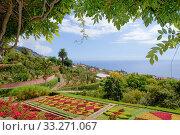 Botanical garden near the coast, Madeira. Стоковое фото, фотограф Edwin Giesbers / Nature Picture Library / Фотобанк Лори