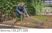 Купить «Young woman gardener collects grass near green seedlings in greenhouse», видеоролик № 33271335, снято 2 апреля 2020 г. (c) Яков Филимонов / Фотобанк Лори