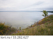 Купить «Побережье Балтийского моря в Эстонии», фото № 33282627, снято 5 июля 2018 г. (c) Victoria Demidova / Фотобанк Лори
