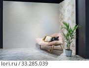 Купить «Просторная гостиная и большое кресло с подушками и пальмой в горшке», фото № 33285039, снято 6 апреля 2018 г. (c) Светлана Васильева / Фотобанк Лори
