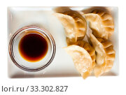 Купить «Japanese steamed dumplings gyoza», фото № 33302827, снято 9 апреля 2020 г. (c) Яков Филимонов / Фотобанк Лори