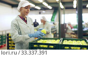 Купить «Portrait of confident young female worker standing near boxes of fresh ripe apples in fruit sorting factory», видеоролик № 33337391, снято 8 апреля 2020 г. (c) Яков Филимонов / Фотобанк Лори