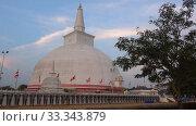 Вид на гигантскую ступу Ruwanwelisaya ранним вечером. Анурадхапура, Шри-ланка (2020 год). Стоковое видео, видеограф Виктор Карасев / Фотобанк Лори