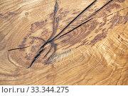 Натуральный деревянный фон. Спил дерева с трещиной. Стоковое фото, фотограф Наталья Гармашева / Фотобанк Лори